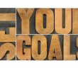 set your goals  - isolated word abstract in vintage letterpress